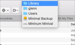 How to open a disk image's Library folder
