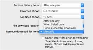 Where to find Safari's downloads list